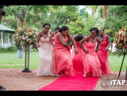 Aaron & Charlene's Wedding Highlights & Dances – OccasionsTV.com