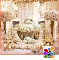Wedding Decor Inspiration 02- Occasions Gallery